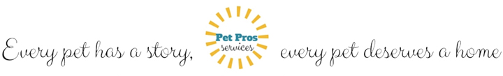 Pet Re-homing | Pet Adoptions | Pet Taxi Services,  Pet Cleaning